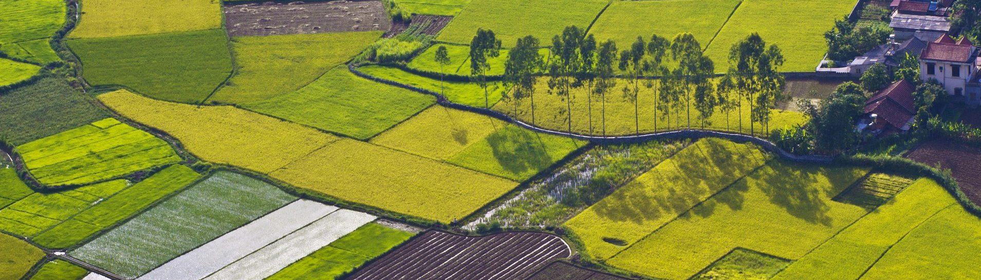 前瞻基礎建設-縣市管河川及區域排水整體改善計畫-農田排水、埤塘、圳路改善
